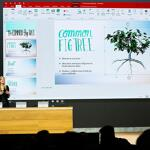 3D in PowerPoint and Microsoft Office