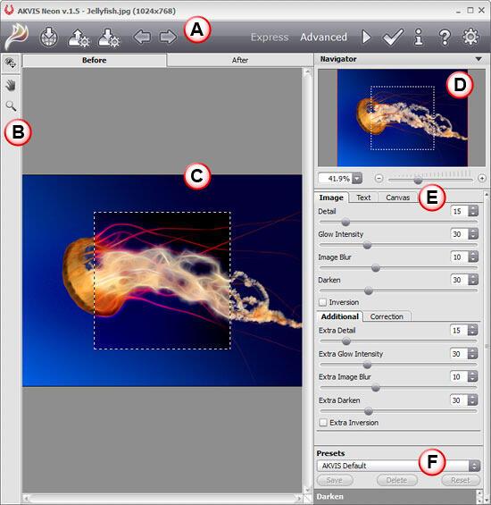 AKVIS Neon interface