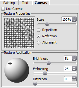 Canvas tab within the Settings Panel