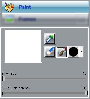 Paint panel tools and parameters