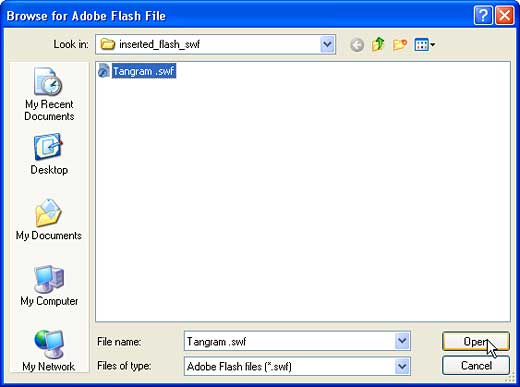 Browse for Adobe Flash File