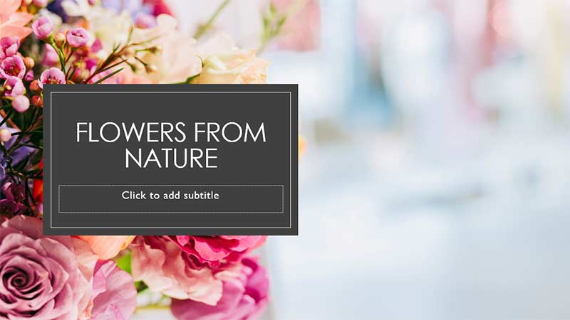Picture of roses added to the Title slide