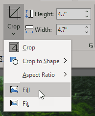 Choose the Crop | Fill option