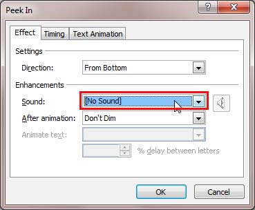 Sound option within your animation dialog box