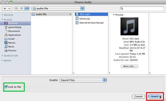 Choose Audio dialog box