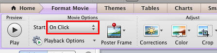 Start button within the Format Movie tab