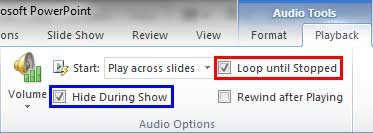 Loop until Stopped and Hide During Show check-boxes selected