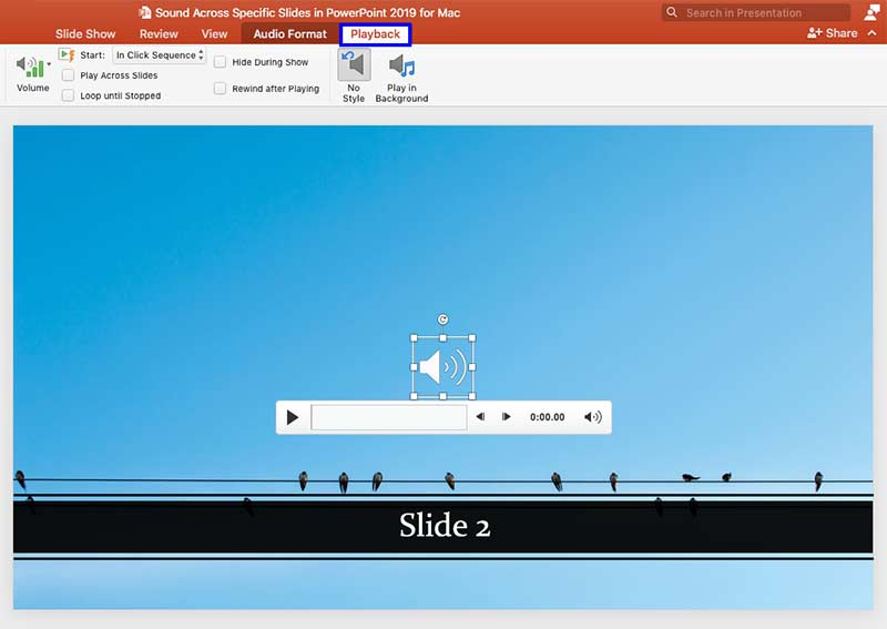Playback tab selected within the Ribbon