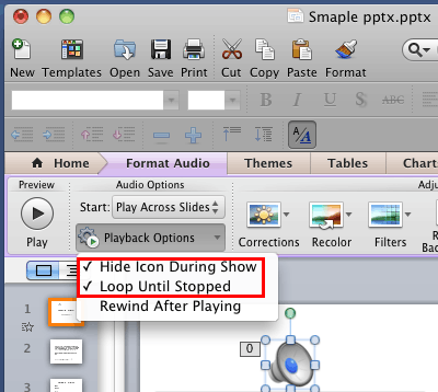 Hide Icon During Show and Loop Until Stopped options selected