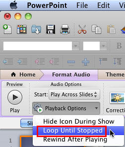 Loop Until Stopped option within the Playback Options drop-down menu