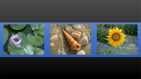 Pictures aligned to the middle of the slide, and thereafter horizontally distributed