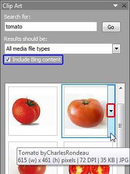Search within the Clip Art Task Pane