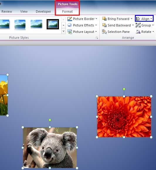 Align button within Picture Tools Format tab