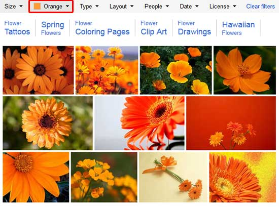 Search results of orange pictures