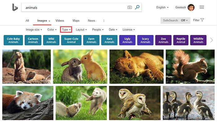 Search results for Animals