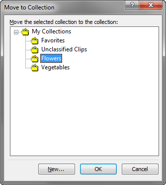 Move your Collection folder