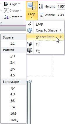 Aspect Ratio sub-gallery within the Crop drop-down gallery
