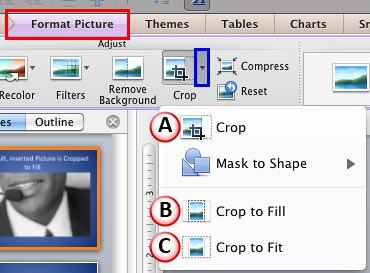 Crop button within Format Picture tab