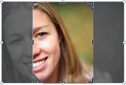 Fill option applied to a picture filled shape