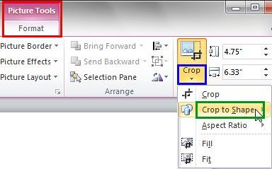 Crop to Shape option within the Crop drop-down gallery
