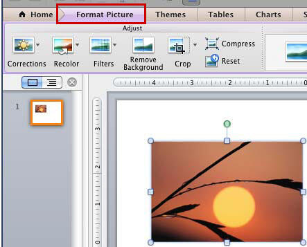 Format Picture tab of the Ribbon activated