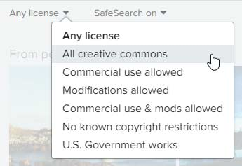 License drop-down list