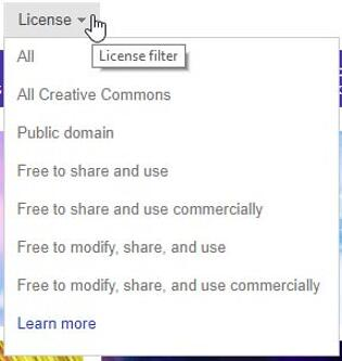 Options within the License menu