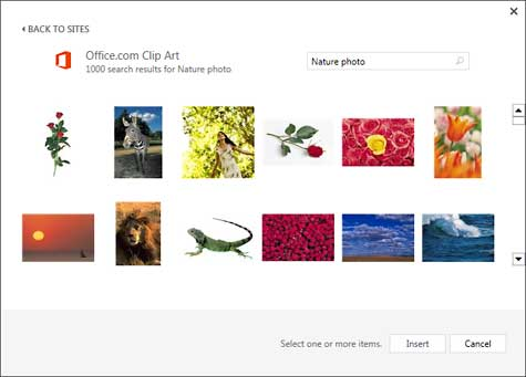 Search result of keywords Nature photo