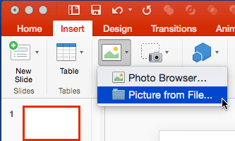 Picture from File option within the Insert tab