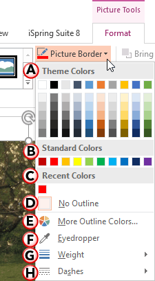 Picture Border drop-down gallery