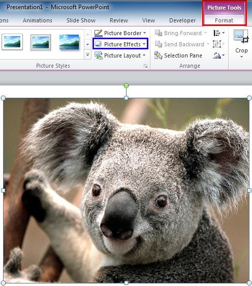 Picture Effects button within the Picture Styles group