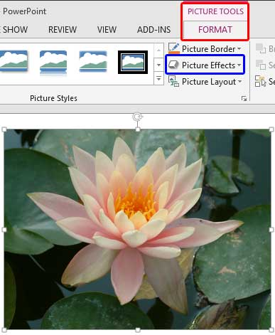 Picture Effects button