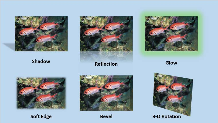Variants of the same picture with different effects applied