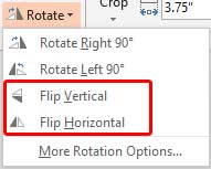Flip options within the Rotate drop-down gallery