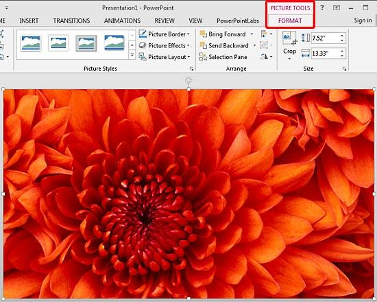 Picture Tools Format tab contextual tab
