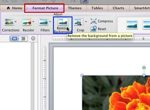Remove Background From Pictures In Powerpoint 2011 For Mac