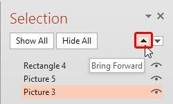 Small picture selected within the Selection Task Pane
