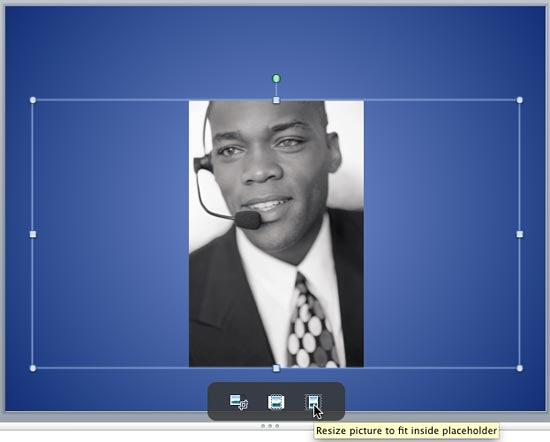 Results of applying the Crop to Fit option to a picture in a placeholder
