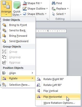 Flip Horizontal option selected