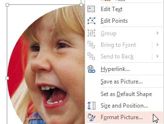 Format Picture option