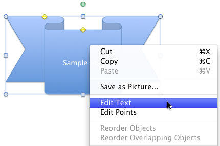 Edit Text option selected