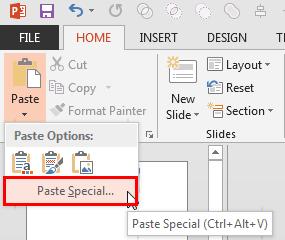 Paste Special option