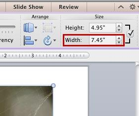 Width and the Height values of the selected picture