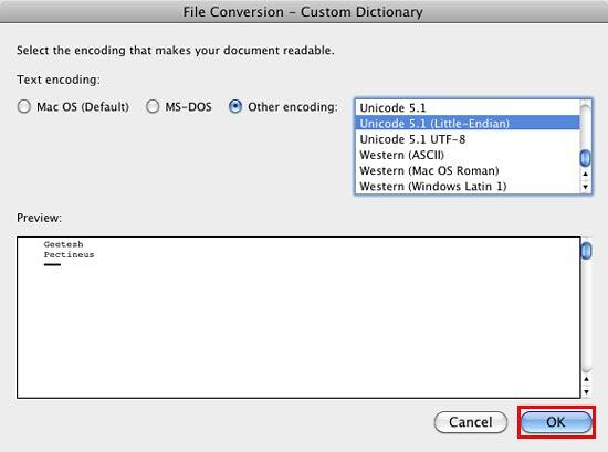 File Conversion dialog box for the selected Custom Dictionary