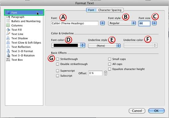 Font options within Format Text dialog box