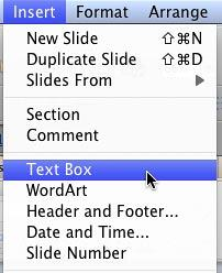 Menu option for inserting a Text Box