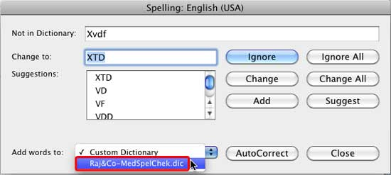 New dictionary within Spelling dialog box