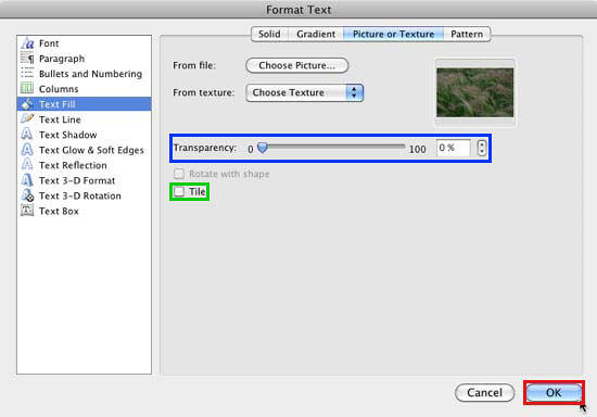 Selected picture shows within the Format Text dialog box