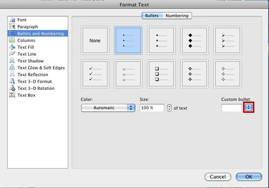 Bullet options within the Format Text dialog box