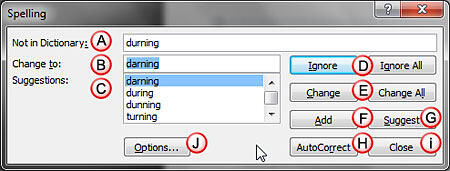 Options within the Spelling dialog box